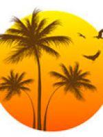Chiusura per ferie collettive - periodo estivo 2021